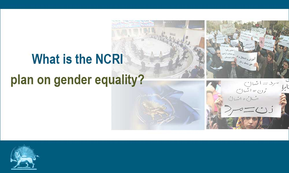 What is the NCRI plan on gender equality?